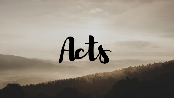 Common Questions from Acts 2 Image
